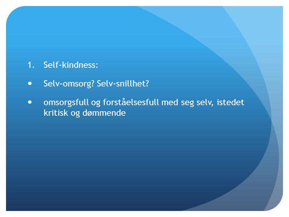 Self-kindness: Selv-omsorg. Selv-snillhet.