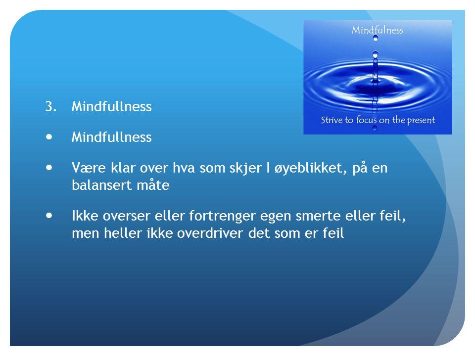 Mindfullness Være klar over hva som skjer I øyeblikket, på en balansert måte.
