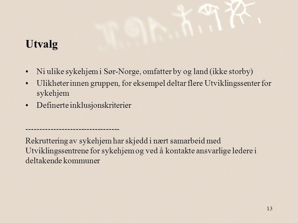 Utvalg Ni ulike sykehjem i Sør-Norge, omfatter by og land (ikke storby)