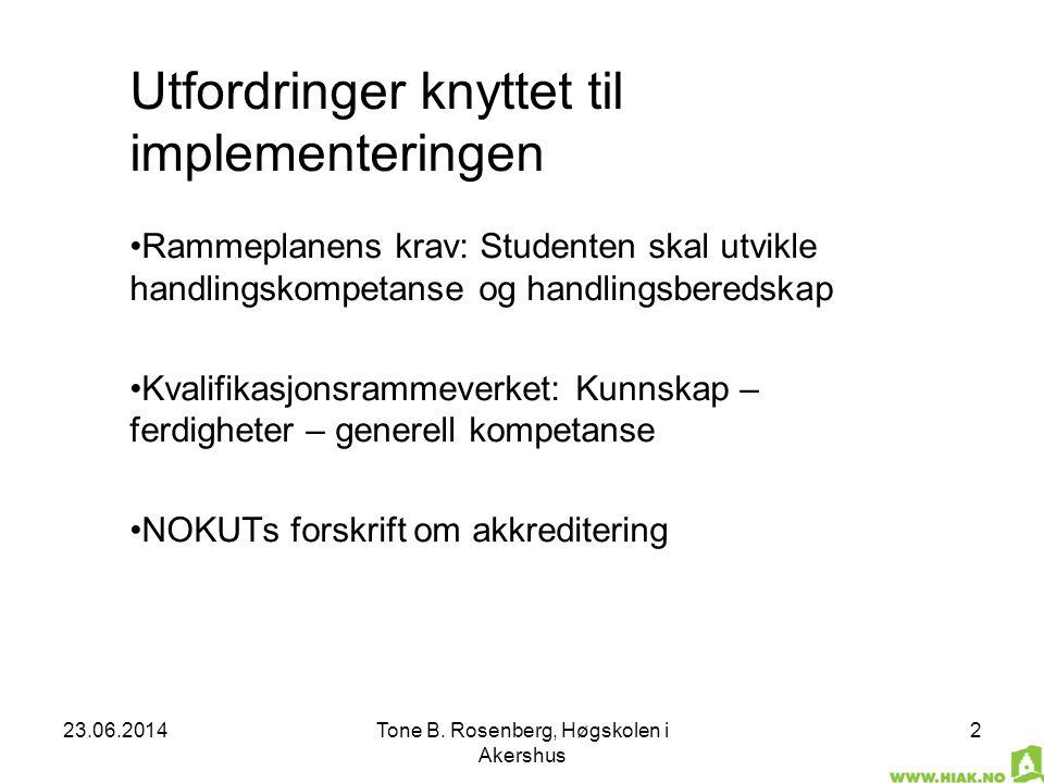 Utfordringer knyttet til implementeringen