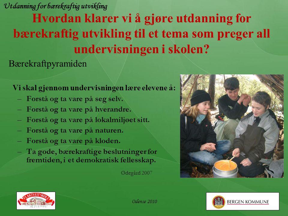 Utdanning for bærekraftig utvikling