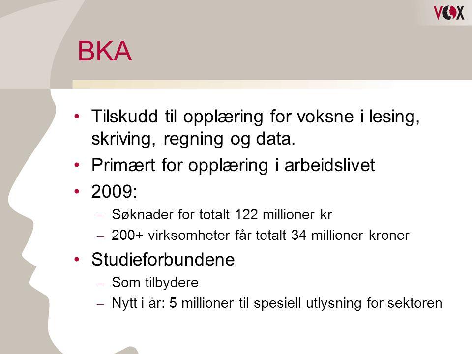 BKA Tilskudd til opplæring for voksne i lesing, skriving, regning og data. Primært for opplæring i arbeidslivet.