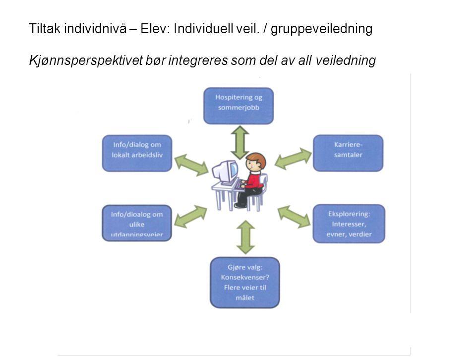 Tiltak individnivå – Elev: Individuell veil
