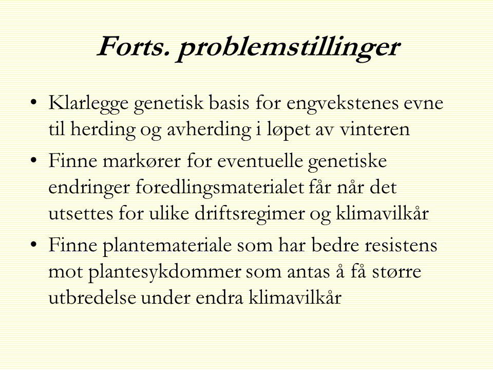 Forts. problemstillinger