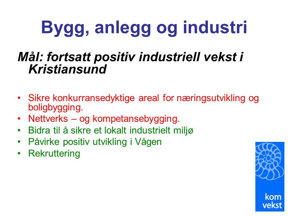Bygg, anlegg og industri