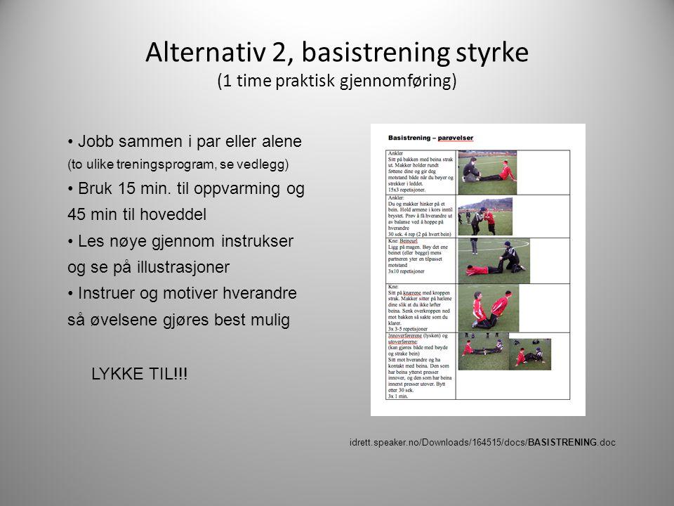Alternativ 2, basistrening styrke (1 time praktisk gjennomføring)