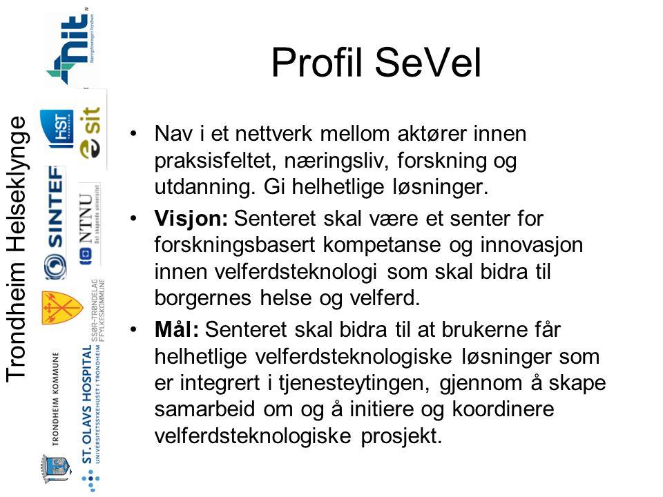 Profil SeVel Nav i et nettverk mellom aktører innen praksisfeltet, næringsliv, forskning og utdanning. Gi helhetlige løsninger.