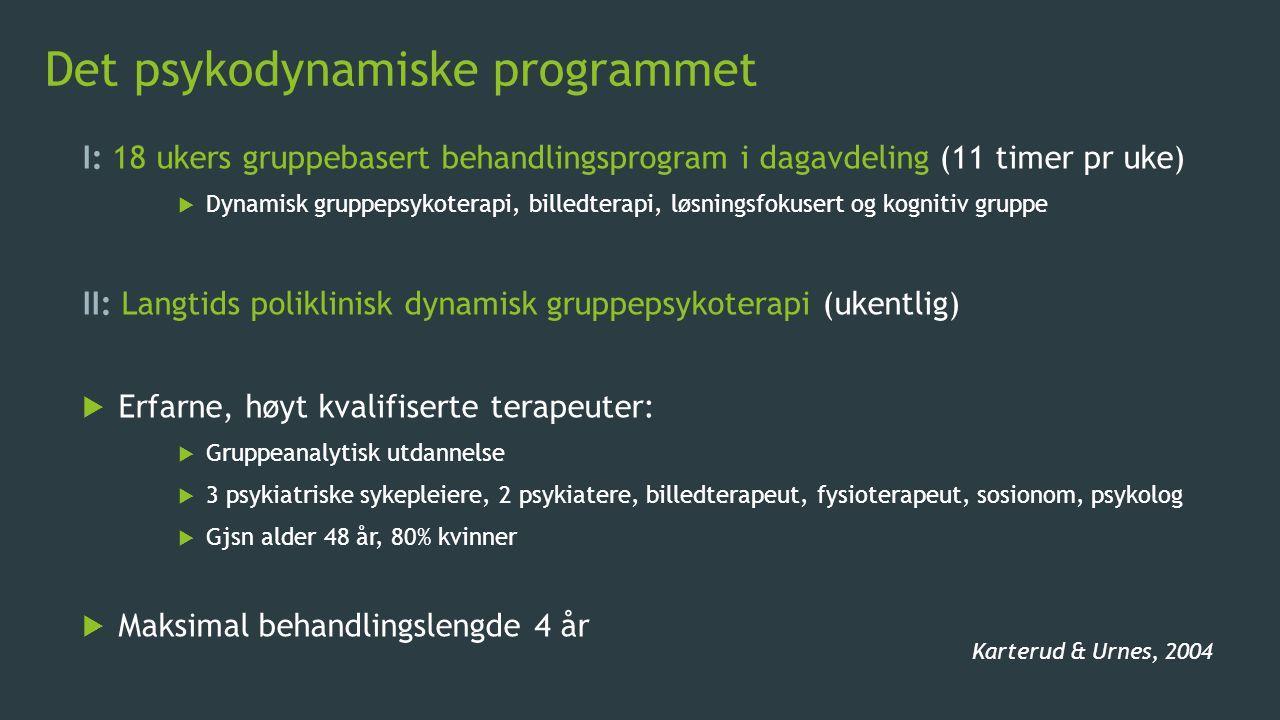 Det psykodynamiske programmet