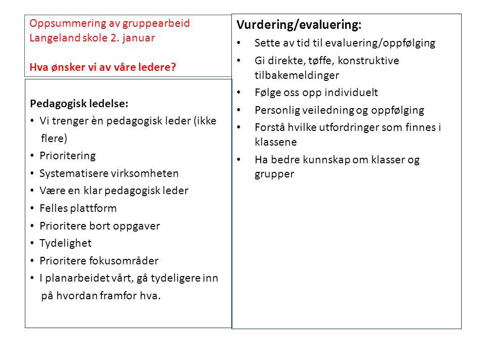 Vurdering/evaluering: