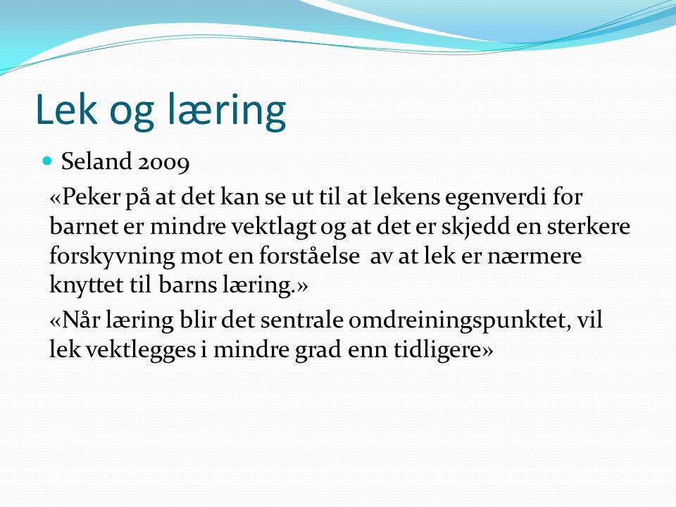 Lek og læring Seland 2009.