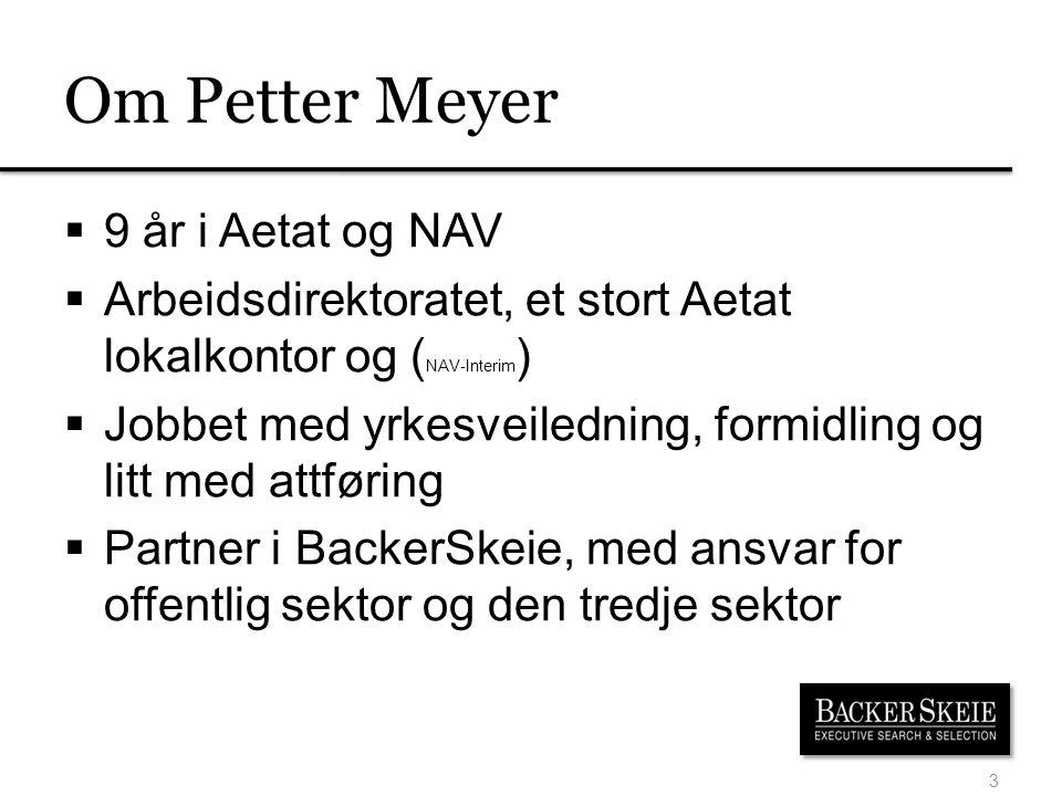 Om Petter Meyer 9 år i Aetat og NAV