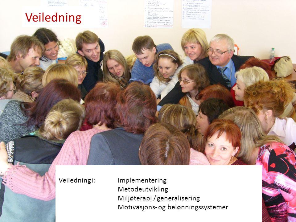 Veiledning Veiledning i: Implementering Metodeutvikling