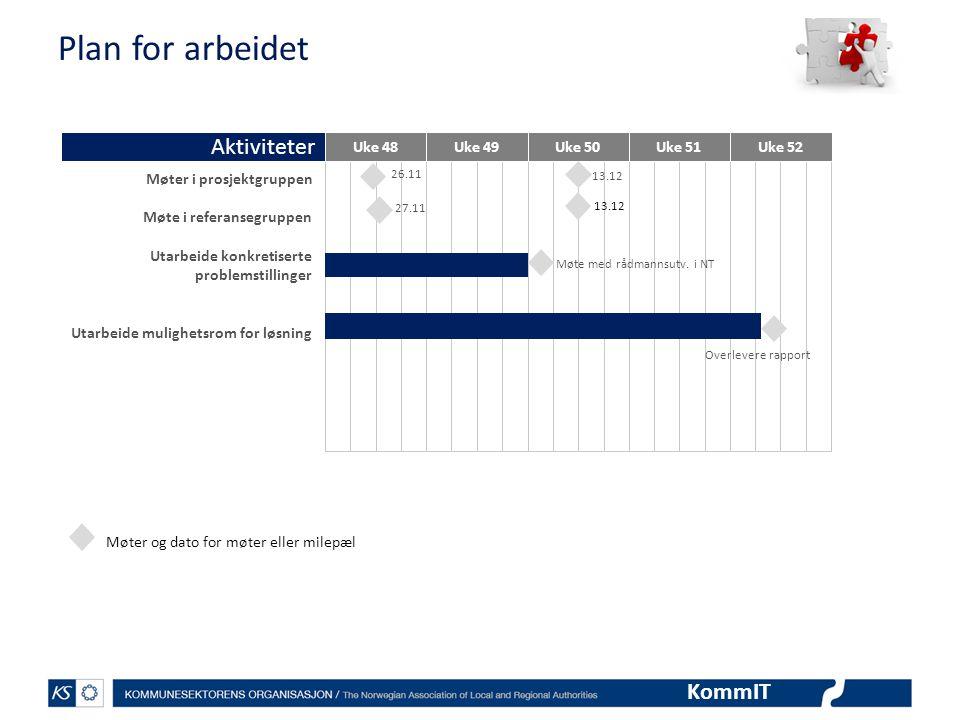 Plan for arbeidet Aktiviteter Møter i prosjektgruppen