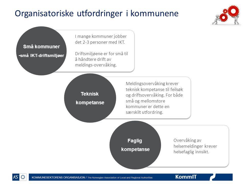 Organisatoriske utfordringer i kommunene