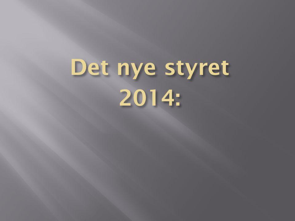 Det nye styret 2014: