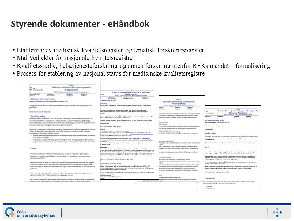 Styrende dokumenter - eHåndbok