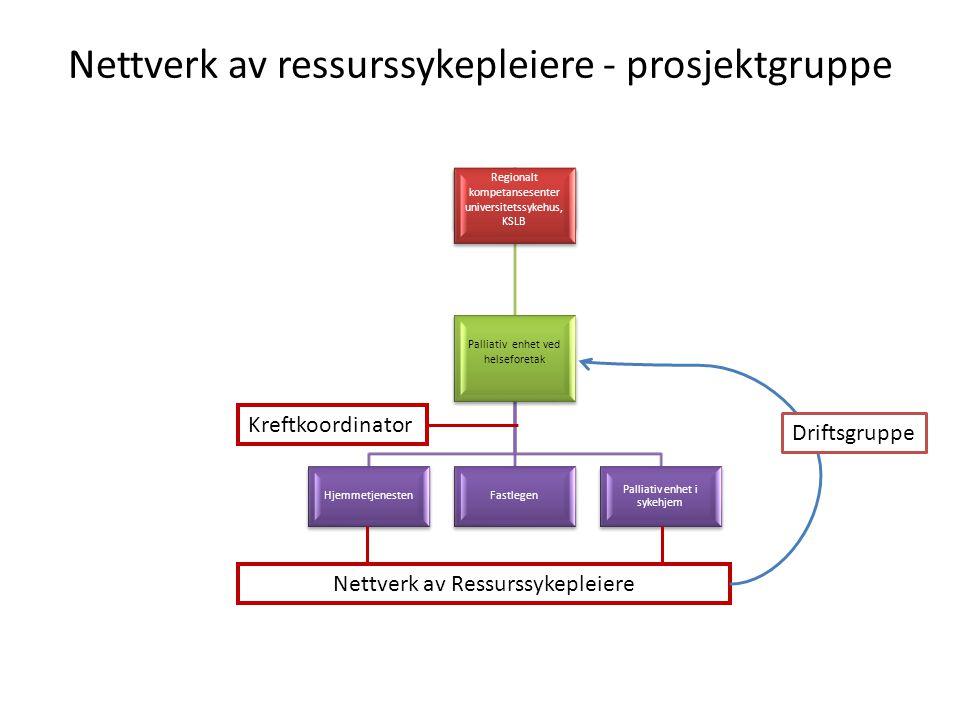 Nettverk av ressurssykepleiere - prosjektgruppe