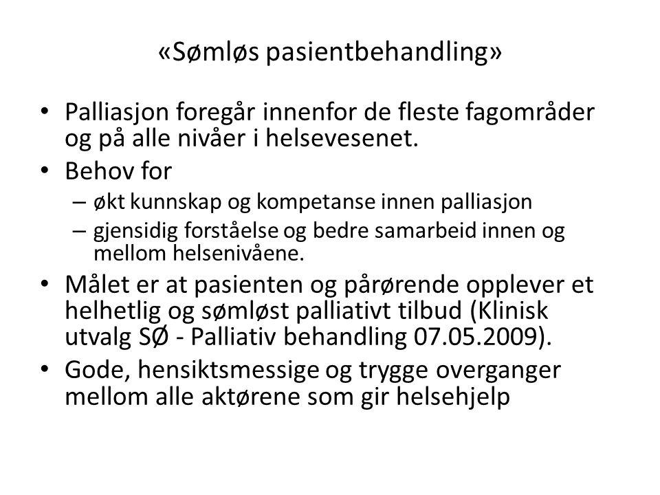 «Sømløs pasientbehandling»