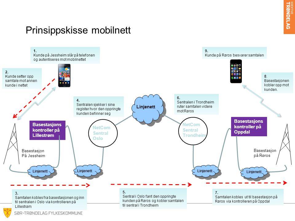 Prinsippskisse mobilnett