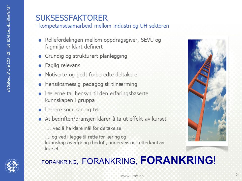 SUKSESSFAKTORER - kompetansesamarbeid mellom industri og UH-sektoren