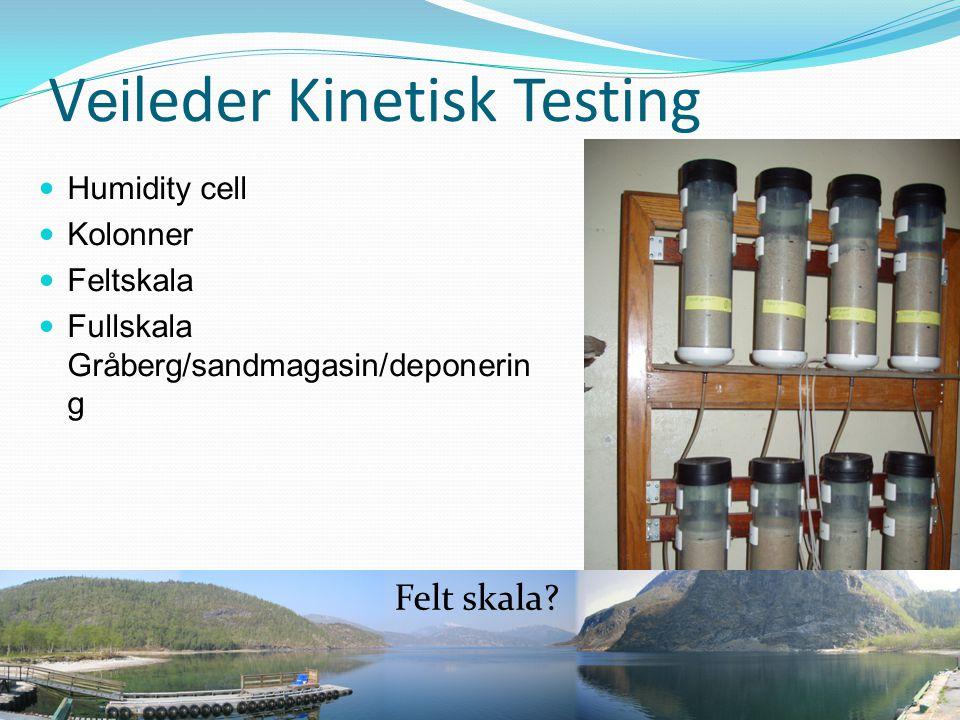 Veileder Kinetisk Testing