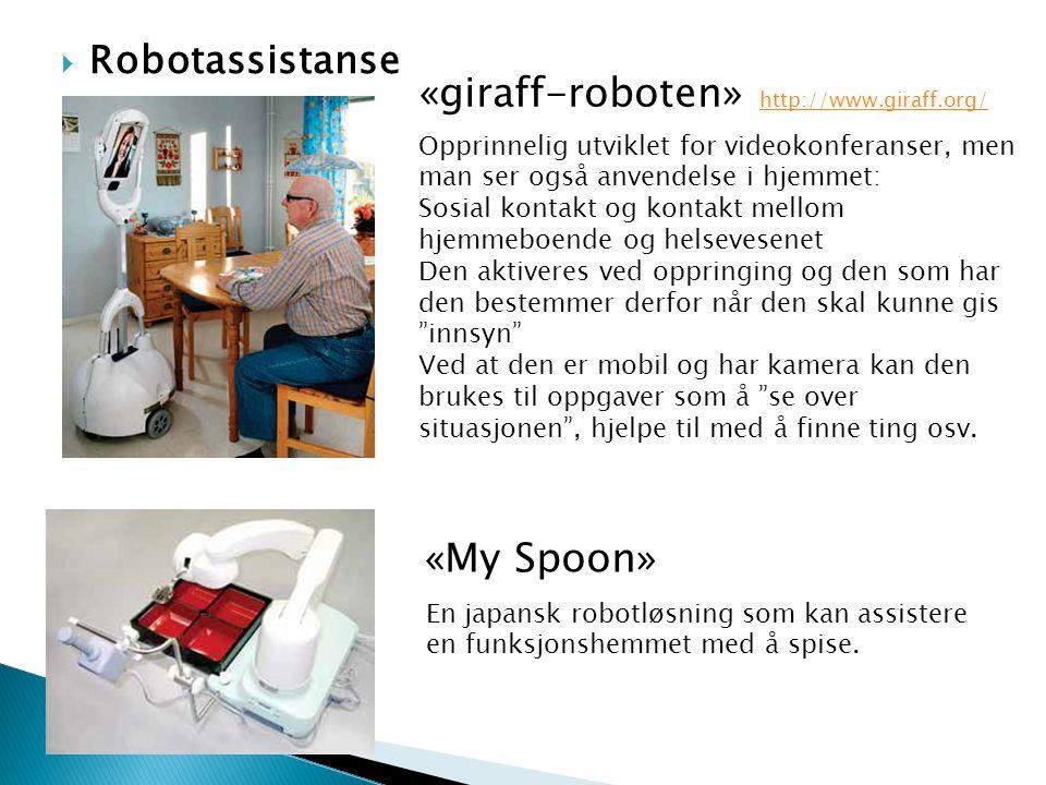 «giraff-roboten» http://www.giraff.org/