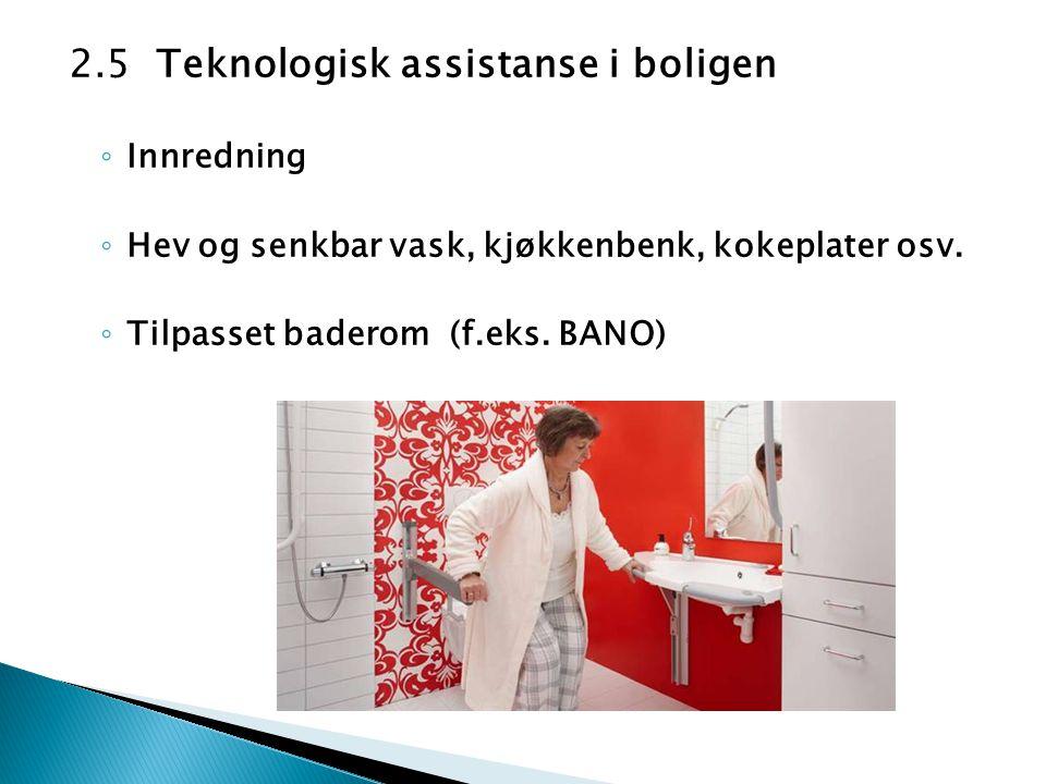 2.5 Teknologisk assistanse i boligen