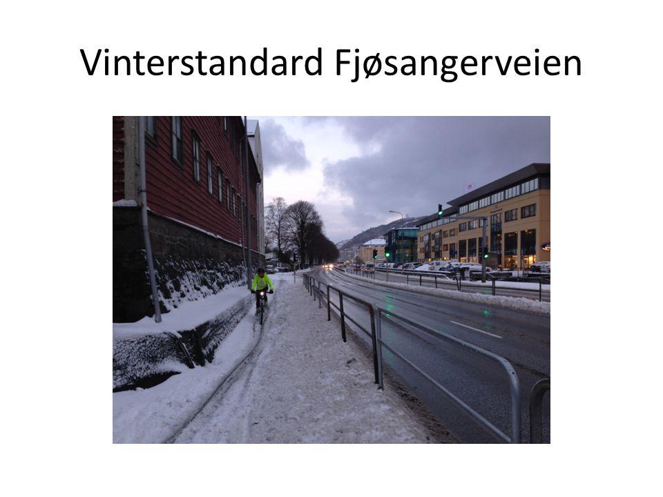 Vinterstandard Fjøsangerveien