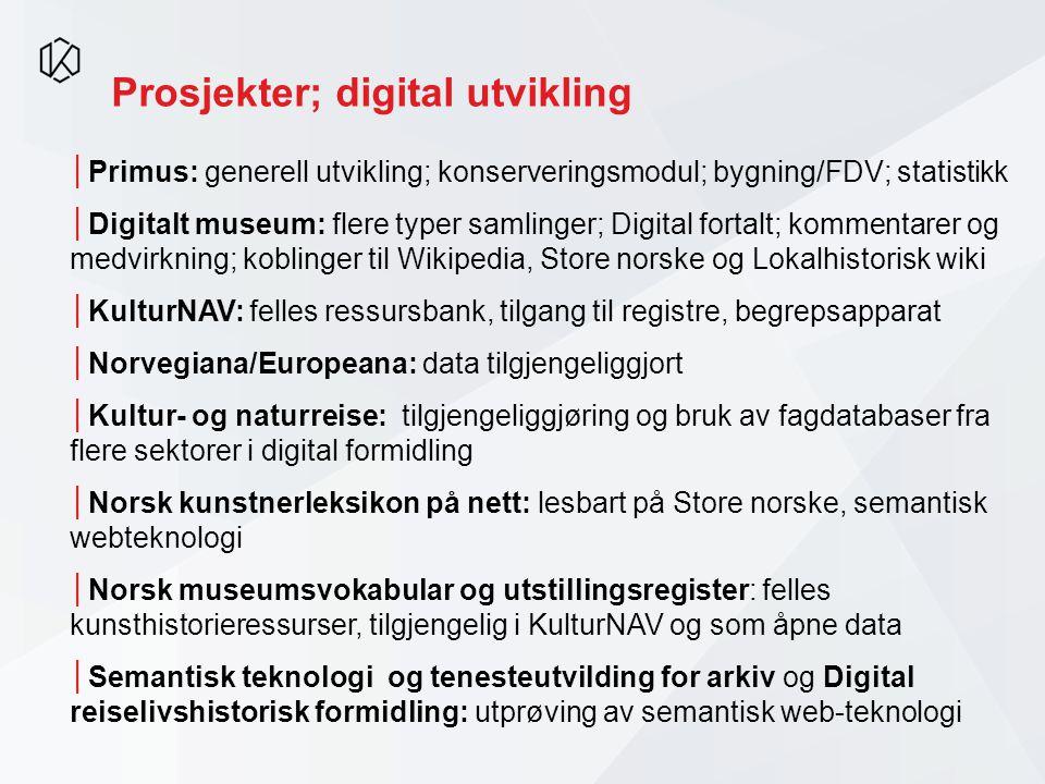 Prosjekter; digital utvikling
