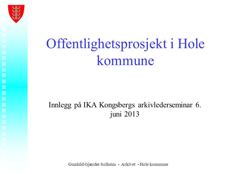 Offentlighetsprosjekt i Hole kommune