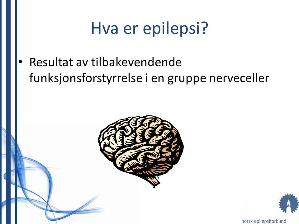 Hva er epilepsi Resultat av tilbakevendende funksjonsforstyrrelse i en gruppe nerveceller