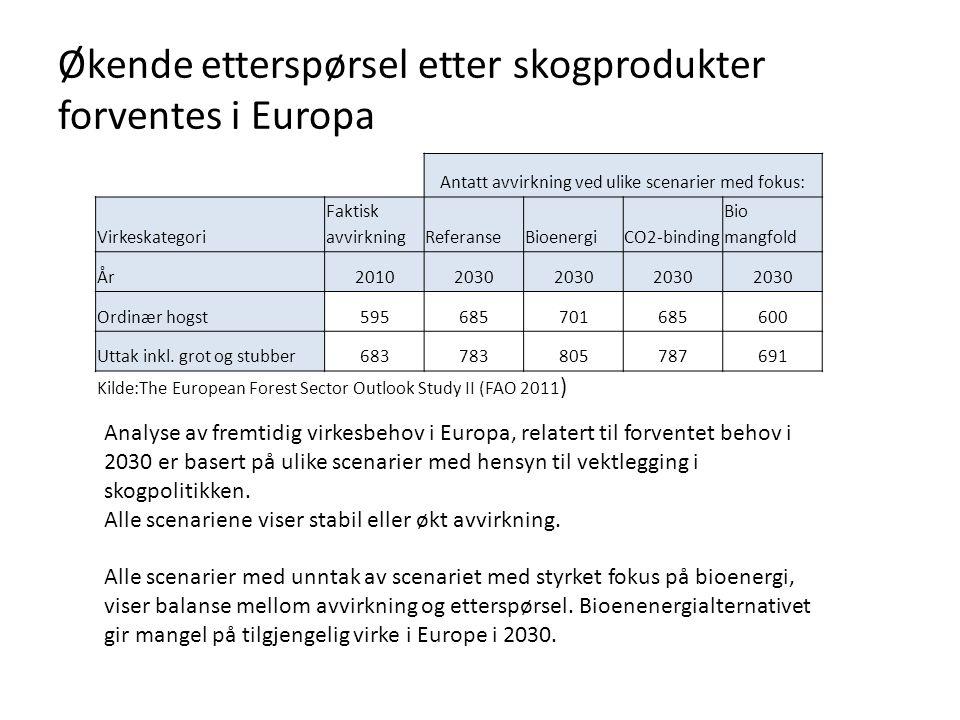 Økende etterspørsel etter skogprodukter forventes i Europa