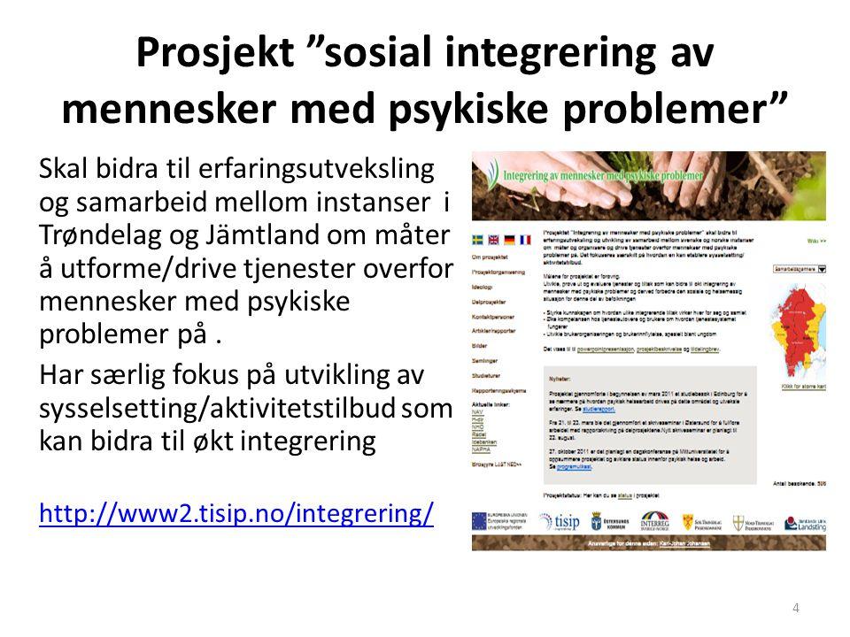 Prosjekt sosial integrering av mennesker med psykiske problemer
