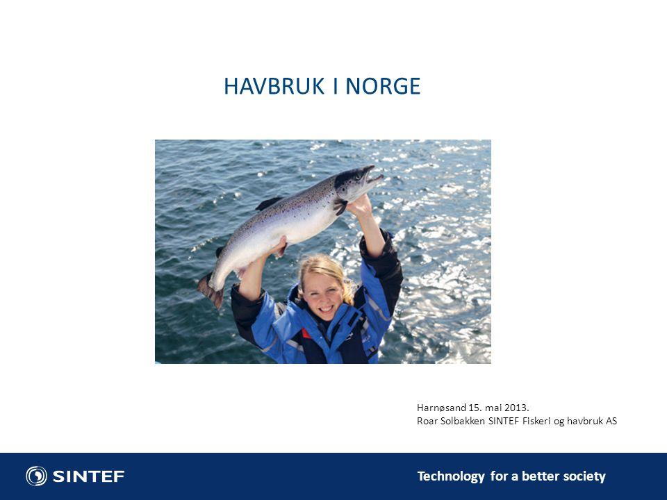 HAVBRUK I NORGE Harnøsand 15. mai 2013.