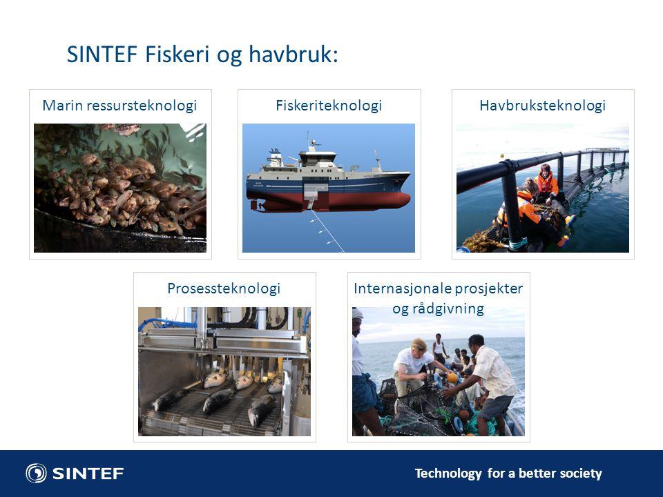 SINTEF Fiskeri og havbruk: