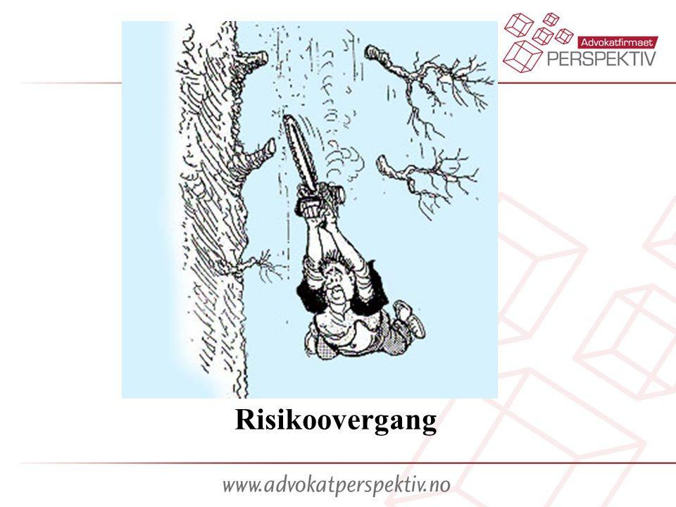 Risikoovergang Risikoovergang