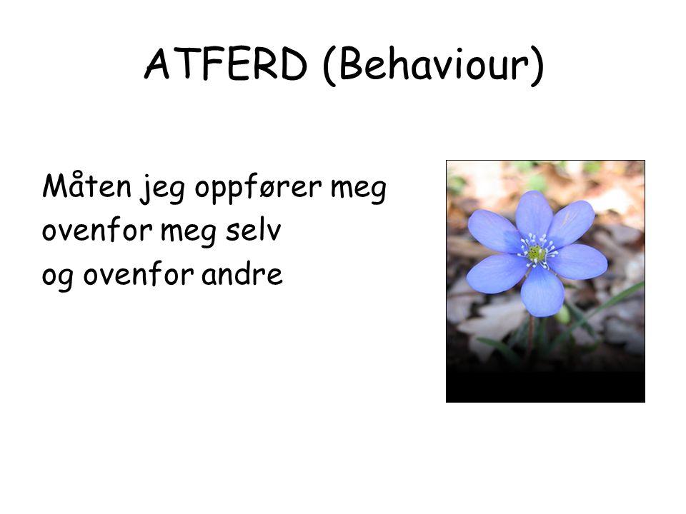 ATFERD (Behaviour) Måten jeg oppfører meg ovenfor meg selv