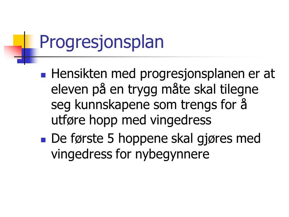 Progresjonsplan