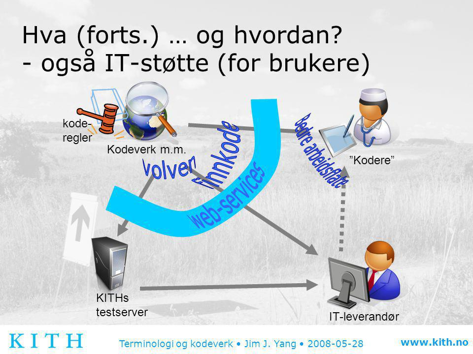 Hva (forts.) … og hvordan - også IT-støtte (for brukere)