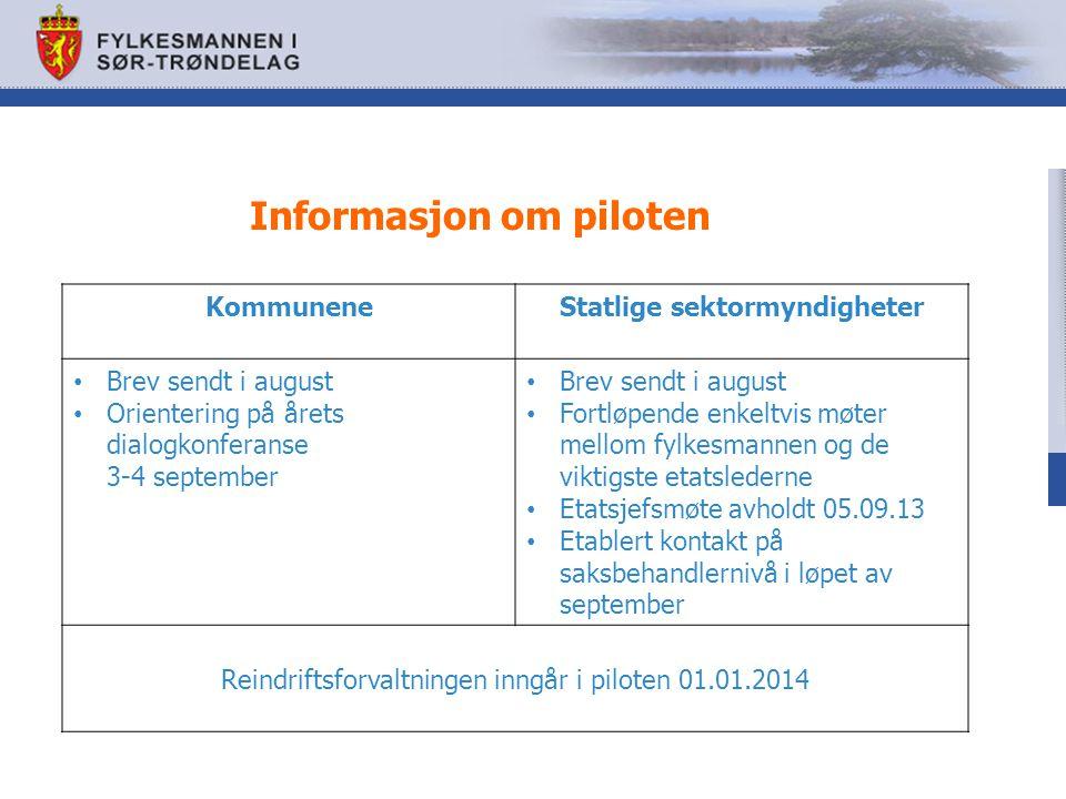 Informasjon om piloten