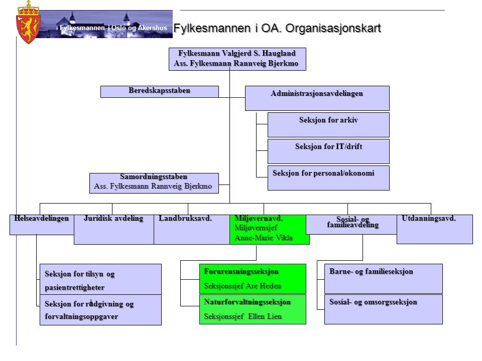 Fylkesmannen i OA. Organisasjonskart
