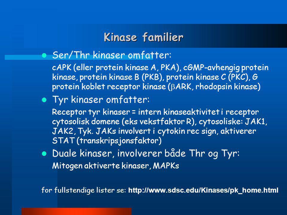 Kinase familier Ser/Thr kinaser omfatter: Tyr kinaser omfatter:
