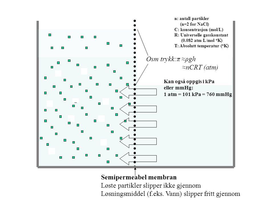 Semipermeabel membran Løste partikler slipper ikke gjennom
