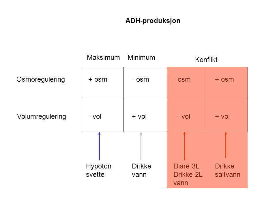 ADH-produksjon Maksimum. Minimum. Konflikt. Osmoregulering. + osm. - osm. + vol. Drikke. vann.