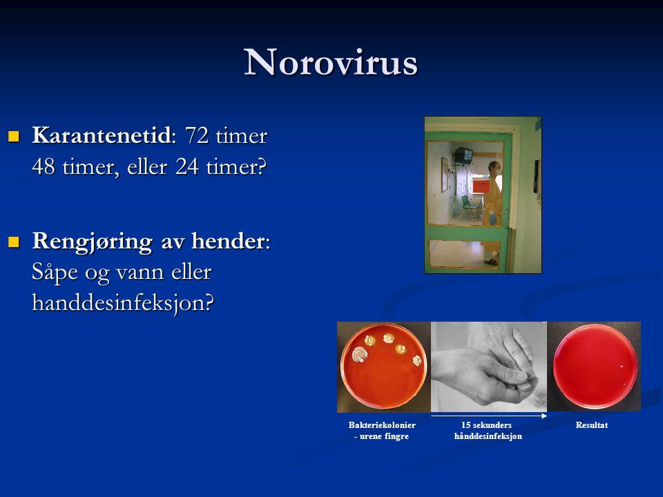 Bakteriekolonier - urene fingre 15 sekunders hånddesinfeksjon