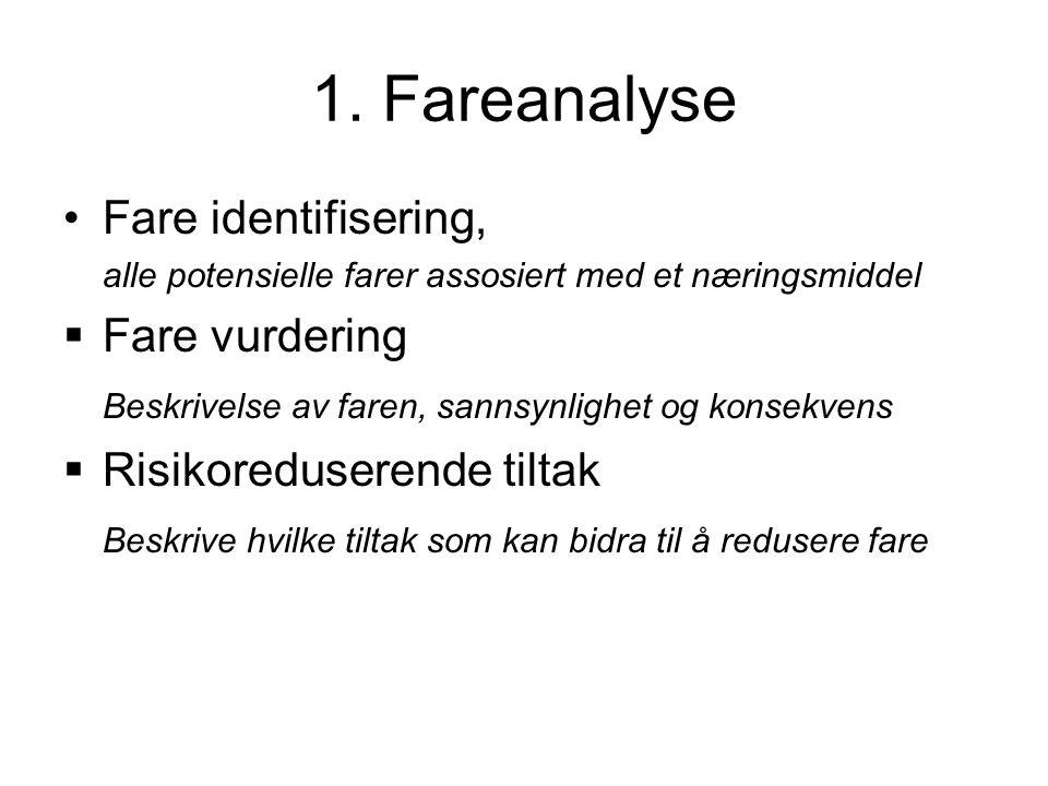 1. Fareanalyse Fare identifisering, Fare vurdering