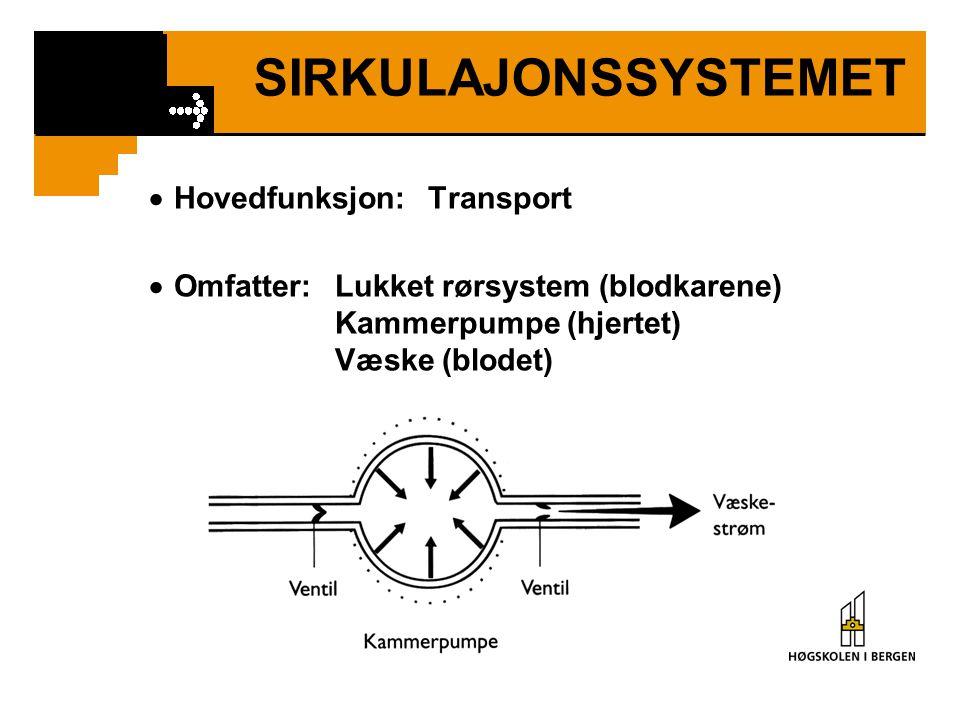 SIRKULAJONSSYSTEMET  Hovedfunksjon: Transport