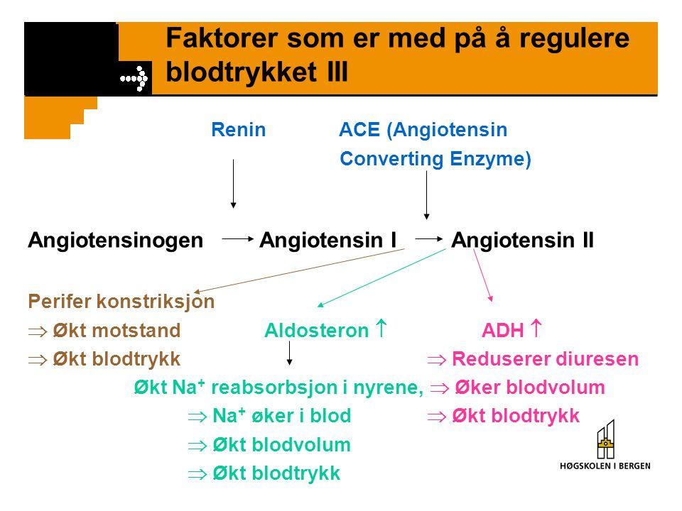 Faktorer som er med på å regulere blodtrykket III