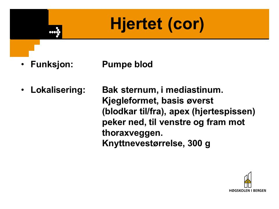Hjertet (cor) Funksjon: Pumpe blod