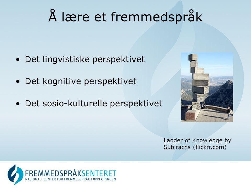 Å lære et fremmedspråk Det lingvistiske perspektivet